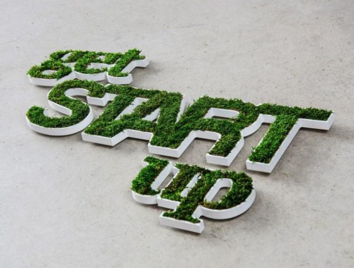 Эко-логотип из плоского мха