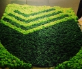 Зеленый логотип Сбербанка