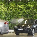 Вертикальное озеленение а автомобильном салоне