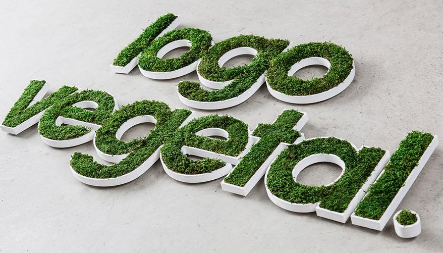 Брендирование зеленым логотипом